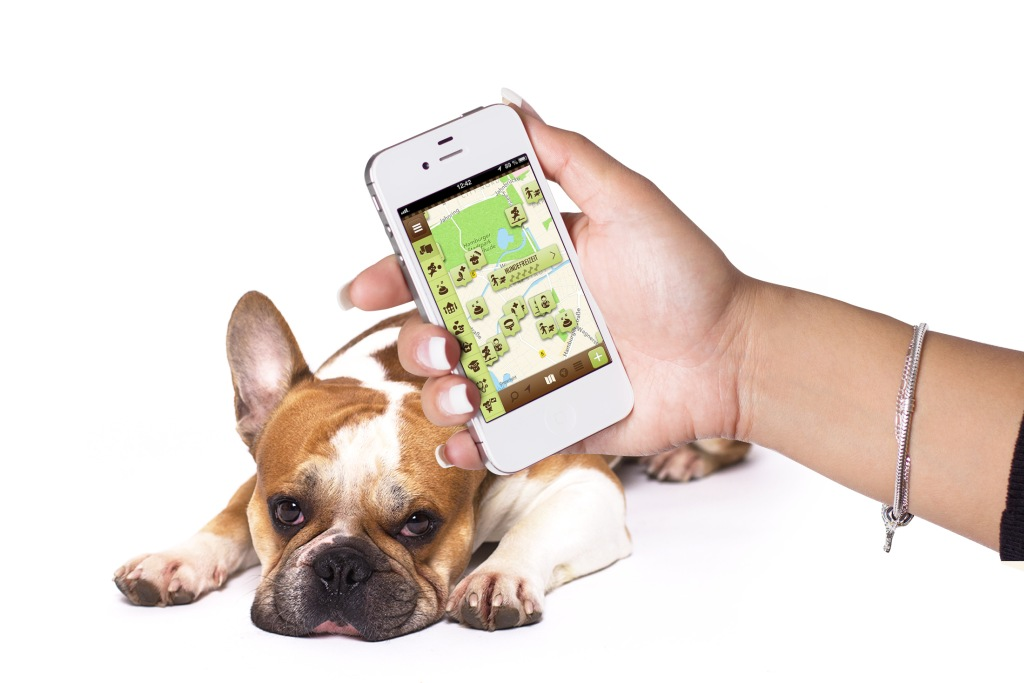 DogsPlaces Smartphone+Hund - www.dogsplaces.de