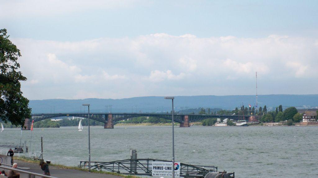 Rheinufer in Mainz - Mülltrennung in Rheinlandpfalz