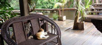 Camp im Orinoco-Delta von Venezuela (c) Eckart Spindler
