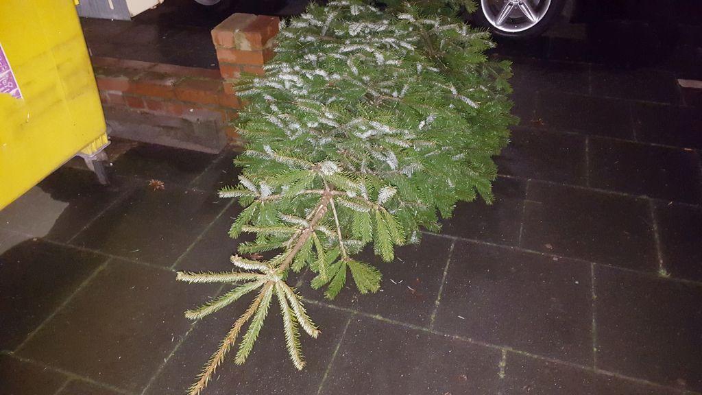 Weihnachtsbaum auf dem Gehweg - RESORTI-Blog