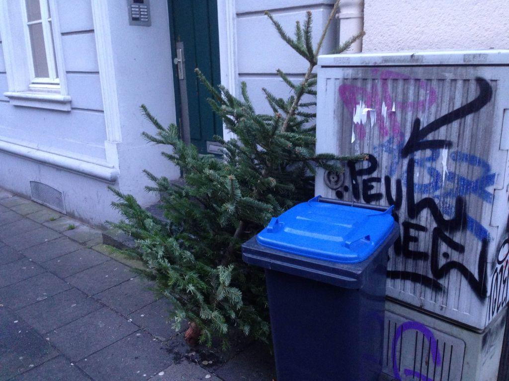 Tannenbaum und Mülltonne auf dem Gehweg - RESORTI-Blog