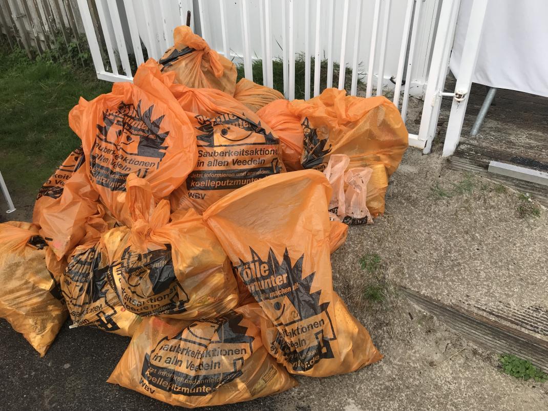 Erschreckend viel Plastikmüll liegt am Rheinufer - RESORTI-Blog