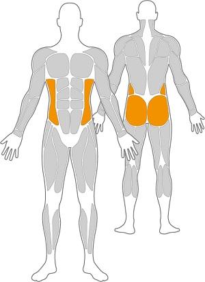 Bewegungsger-t-Skitrainer-Duo-Inox-Muskeln